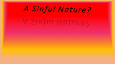 SinNature4